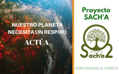 El Proyecto Sach'a cuenta con el apoyo del Ministerio de Agricultura, Pesca y Alimentación de España