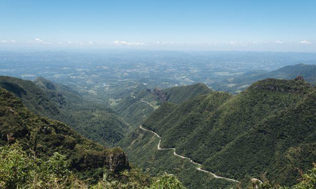 Brasil pondrá en marcha el mayor corredor de reforestación de Sudamérica