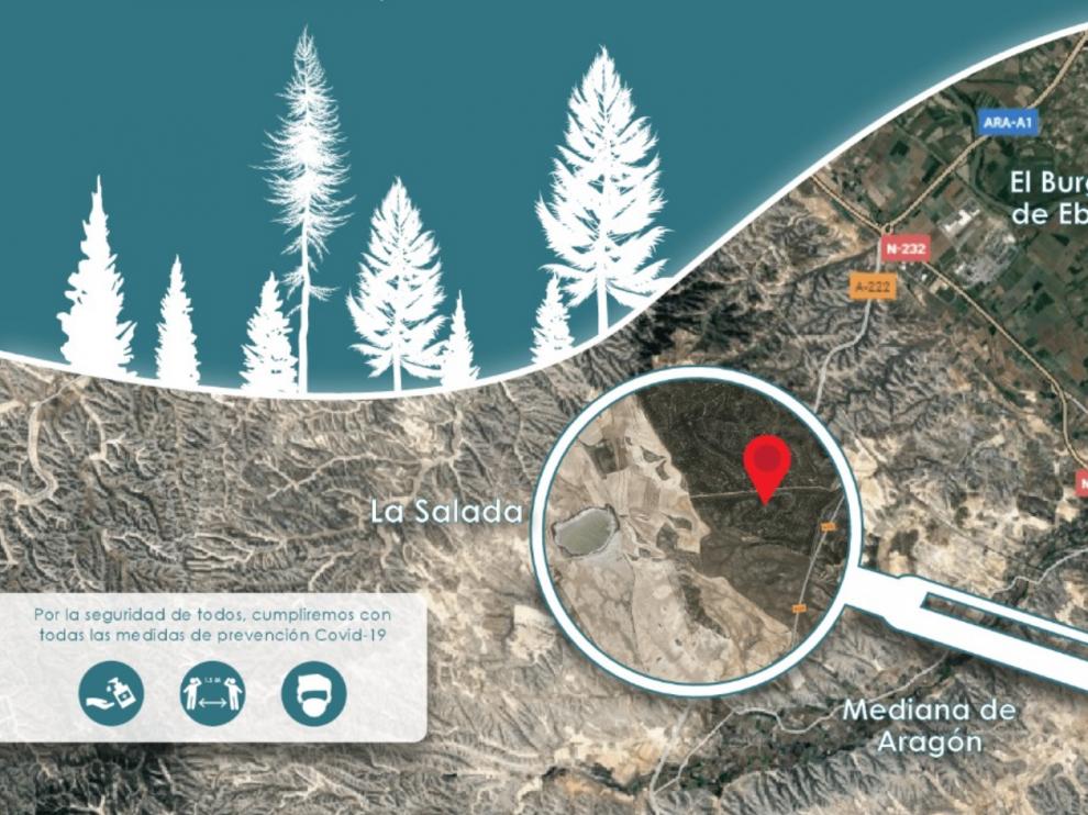 Localización del monte en el que se van a plantar los pinos.Junta Vecinal La Cartuja